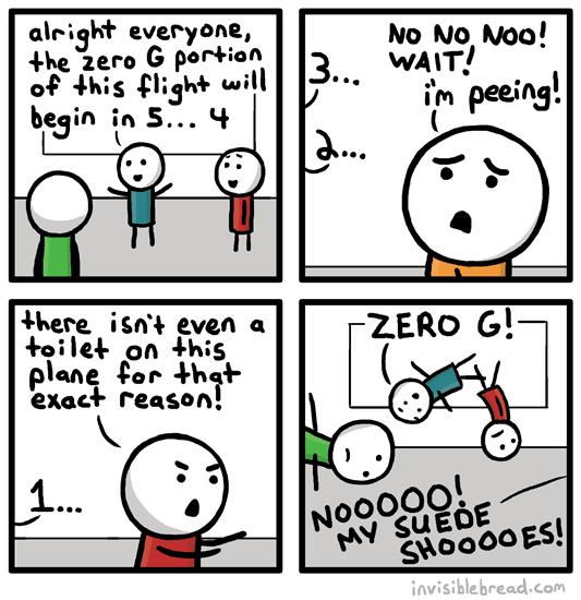 Zero G Flight